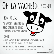 funny french expression